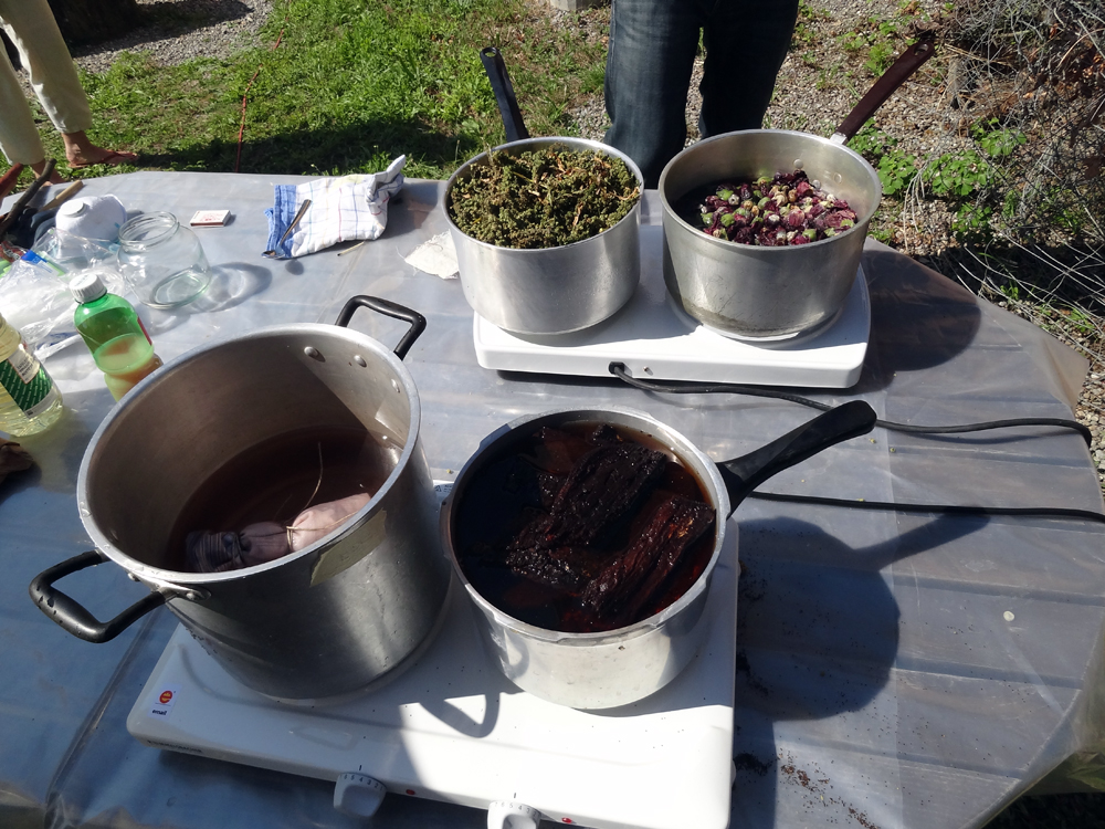 Aug 17 - Workshop about plant dyeing at Boniswil, held by Anna & Juan (http://annajuan.ch)